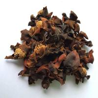Quality Magnolia coco Lour DC dried flowers for tradtional drugs for sale