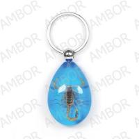 Novelty Gift-----Real Scorpion Men-made Key Chain
