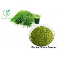 Quality Green Fine Barley Grass Powder / Barley Grass Juice Powder Lower Blood Sugar for sale