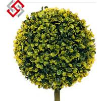 Quality PE Grass Ball (Seawrchin Cactus) for Christmas Bonsai Decoration and Floral Art for sale