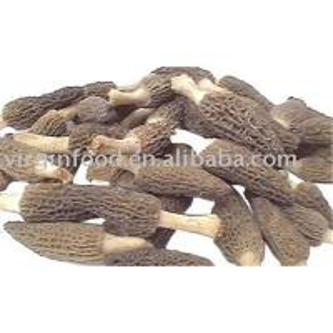 Quality Morel Mushroom Dried for sale