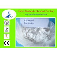 Anti Aging Steroids Boldenone Cypionate 106505-90-2 For Strengthen Immune System