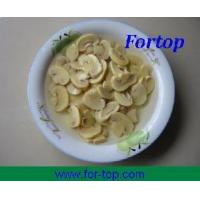 Quality Canned Champignon Mushroom Pieces & Stems for sale
