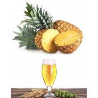 China Bromelain for beer and beverage clarification, food additives on sale