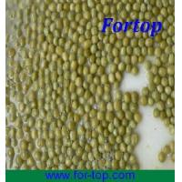 Quality Canned Green Pea in Brine (CGP-002) for sale