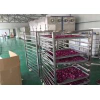 Quality Drying Flower Vegetable Dehydrator Machine , High Efficiency Industrial Fruit Dryer for sale