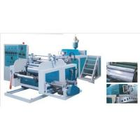 China Food Wrap Cling Film Production Line on sale
