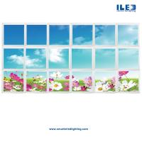 Buy cheap Ceiling Art, LED Skylights, Sky Ceiling Panels, LED Backlit Sky Ceilings, Digital Panoramic Wall Murals & the new Virtua from Wholesalers