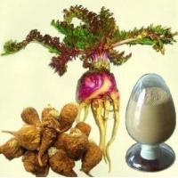 Quality peruvian maca powder cantains 40% macamides with Good Price --Macamide Macaenes for sale