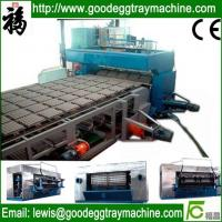 Quality waste paper pulp egg tray/box making machinery for sale