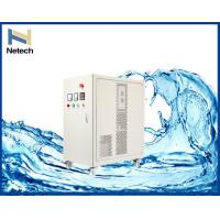 Quality 100g/hr Output Ozone Generator For Food / Beverage Production Line Bottled Water Treatment for sale