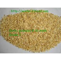 Quality dried garlic grains with root for sale