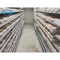 Quality Fresh Tuna Small Tunnel Plate Blast Walk In Freezer Industrial Seafood Iqf Cold Contact Panel for sale