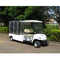Quality 2 Seater Electric Utility Carts , Electric Food Cart With Customized Cargo Box for sale