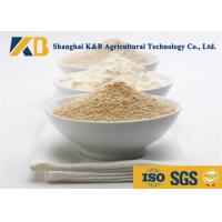 Quality Water - Soluble Nutribiotic Raw Organic Rice Protein Food Grade For Diet Meal for sale