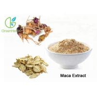 Quality High Purity Herbal Plant Extract Maca Extract Powder Brown Yellow Color for sale