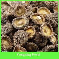 Quality Hot-sale Dry Shiitake Mushrooms for sale