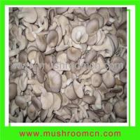 Quality Fungus (fresh oyster mushroom) for sale