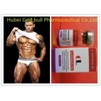 Quality Natural Sustanon 250 Injectable Steroids , Fitness Testosterone Injections Steroids for sale