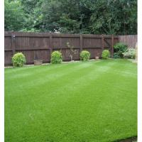 Quality NEW arrival astro grass for sale
