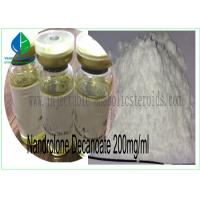 Quality Finished Oil Steroids Nandrolone Decanoate 200mg/Ml For Increase Muscle Strength for sale