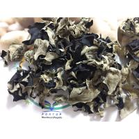 Factory Price Premium NEW CROP Dried White Back Black Fungus within 5 CM