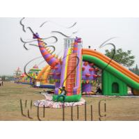 China 2015commercial inflatable slide / giant inflatable water slide for adult on sale !!! on sale