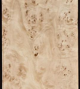 Mappa/Poplar Burl Veneer