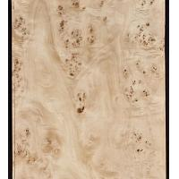 Buy Mappa/Poplar Burl Veneer at wholesale prices