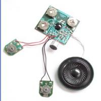 China Customized Recordable Sound Module with microphone for sound greeting card on sale