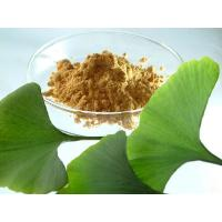 Quality Ginkgo Flavone Glycosides24% Ginkgo Biloba Extract Powder for sale