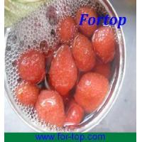 Quality Canned Strawberry Whole in Syrup for sale