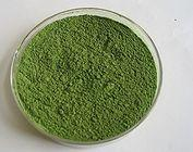 Quality dehydrated green pepper powders for sale