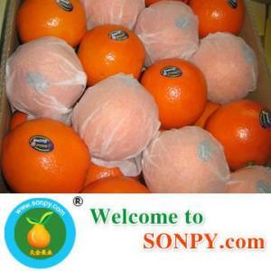 Quality Fresh Orange for sale