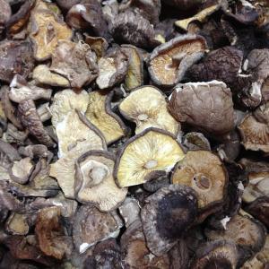 China Factory Price Organic Dried Mushroom Shiitake Broken Whole in Bulk on sale