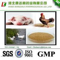 China supply poultry feed additives choline chloride 60% powder on sale