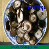 Quality Canned Whole Mushroom in Brine (CMW-004) for sale
