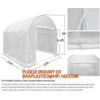 Quality Easy install greenhouse tomato single-span Plastic Film Green House,Low cost garden green houses for plating, PACKAGES for sale