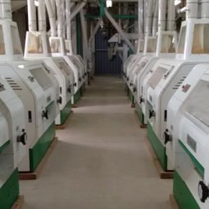 Quality PLC Control Maize Flour Milling Machine 60T-120T /24H Pneumatic Roller for sale