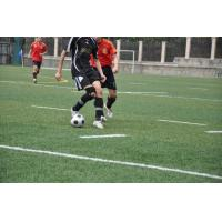 Quality Synthetic grass for soccer pitch for sale
