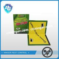 China China mouse trap supplier,paperboard mouse glue board factory on sale