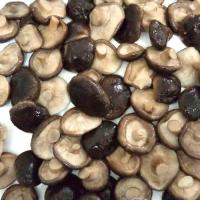 China Factory Price Premium NEW SEASON Canned Shiitake Mushroom Whole in Brine on sale