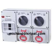 Quality Combination socket with RCD protection for sale