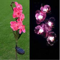 Quality Pink Phalaenopsis Stainless Steel Solar Garden Lights, Flower Solar Powered Outdoor Lights for sale