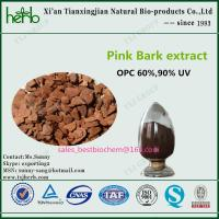 Quality Pinus pinaster Pink Bark Extract for sale
