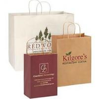 Quality Logo Custom Printed Paper Bags , Reusable Paper Shopping Bag with Handle for sale