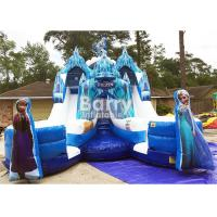 Quality Customized Size Frozen Double Commercial Inflatable Slide Indoor And Outdoor For Kids for sale