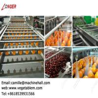 Quality Automatic Fruit and Vegetable Washing Equipment|Dates Processing Plant for sale