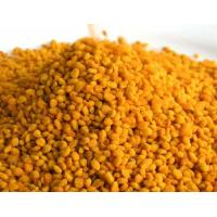 Quality Big Granual Organic Natural Bee Products Fresh 100% Pure Tea Pollen for sale
