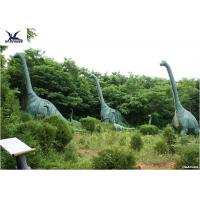 Quality Sunproof Life Size Dinosaur ModelsFor Science And Technology Exhibition for sale